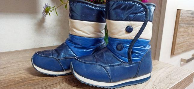 Зимние сапоги ботинки Том. м