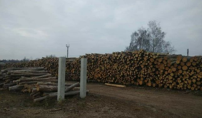 Продам дрова рубленные, метровые, чурки