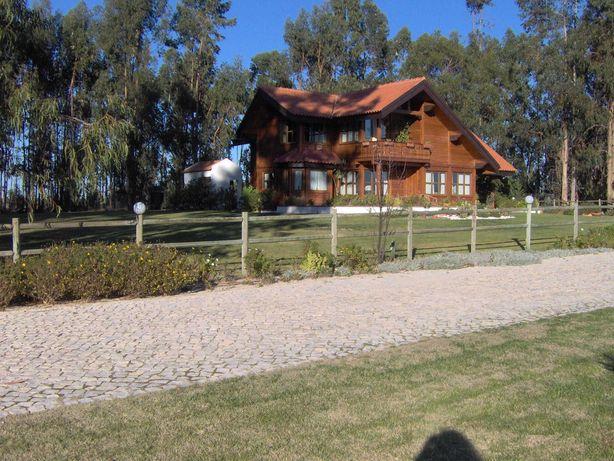 Quinta 2 hectares com moradia V4