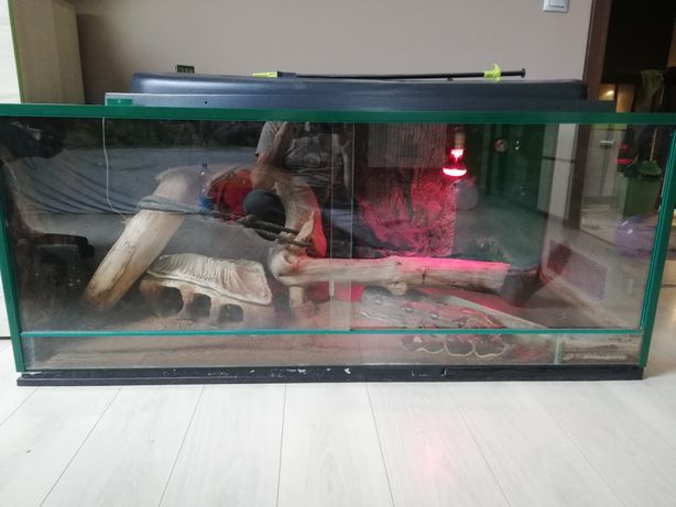 Terrarium dla gada. Duże 150x60x65 cm