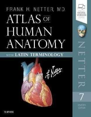 Atlas of Human Anatomy, F.H. Netter, 7 Edition, 2019 (печать и e-book)