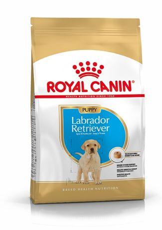 ROYAL CANIN labrador  retriever puppy/junior - Ração para Cão