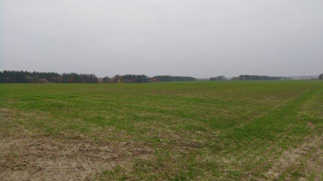 Здам земельну ділянку в оренду Хмельницька область, Кам'янець-Подільск