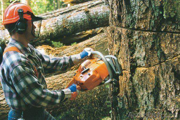 Спил деревьев любой сложности ,покос травы,уборка участков,
