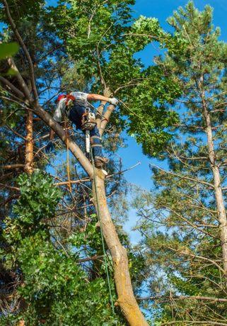 Спил дерев у важко доступних місцях!