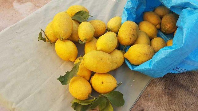 Vendo Limões naturais - (kg)