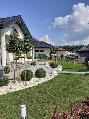 Zakładanie ogrodów, Projekty kostki brukowej, nawadnianie ogrodów