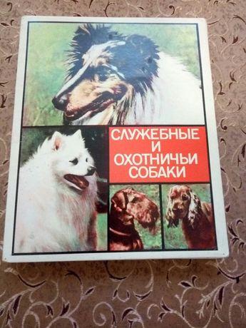 """Спички сувенирные """"Служебные и охотничьи собаки"""" ссср."""