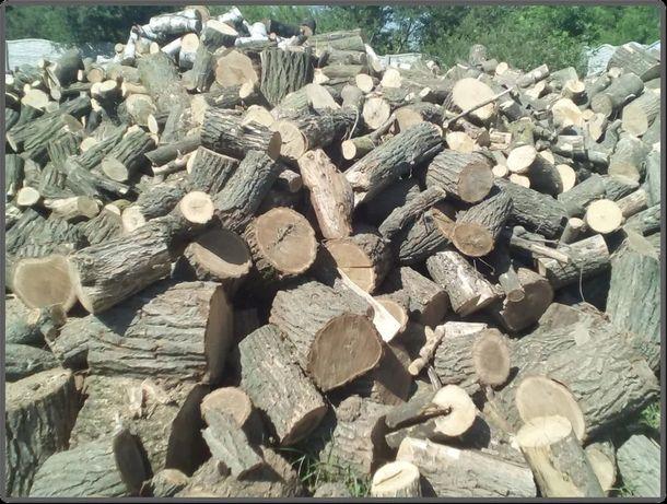 Продам дрова твердых пород Акация Дуб в Чурках