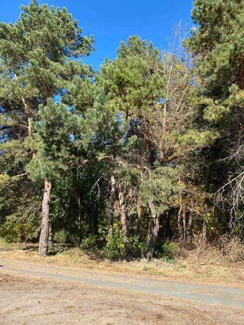 Продам участок 17,5 соток в лесополосе, вьезд в Обуховку
