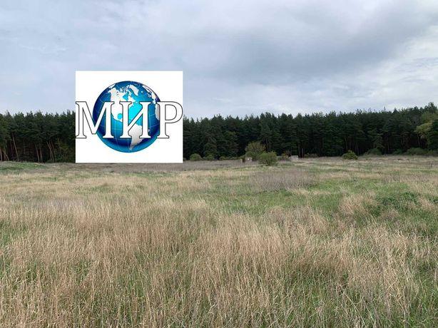 Продам 3 га земли c выходом в сосновый лес.