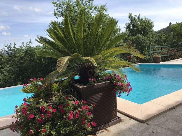 Casa no Gerês com piscina -ermal