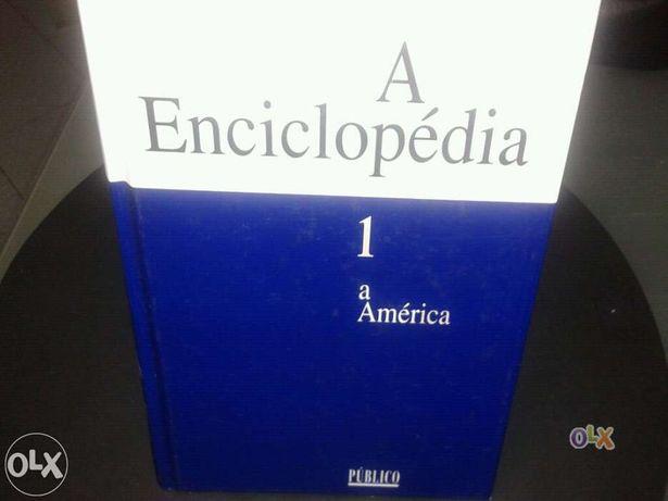 Enciclopédia público. 30 volumes. novos