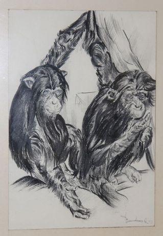Desenho em carvão vegetal do artista Holandês Van Laere - 1943
