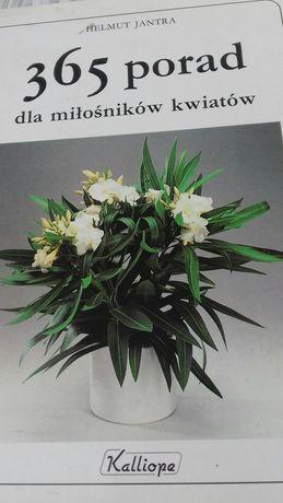 365 porad dla miłośników kwiatów