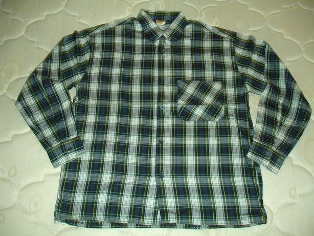 camisas de menino tamanho 11 a 14 anos nova
