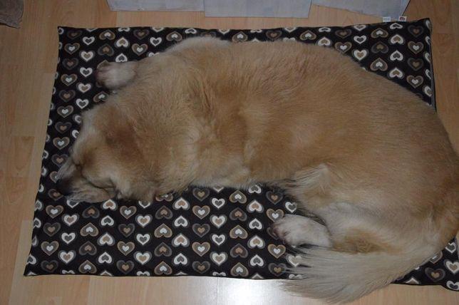 Legowisko dla psa, super jakość ! 105 x 70 rozbieralne PROMOCJA