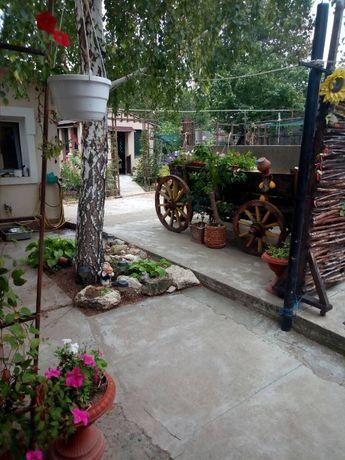 Продаю уютный дом Терновка , Центр