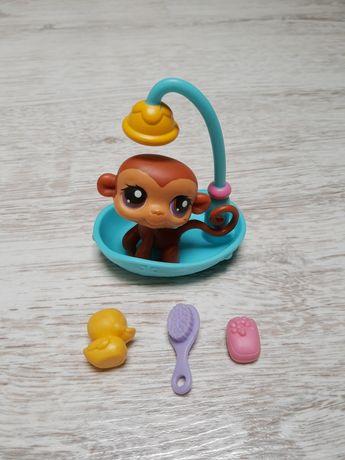 Lps littlest pet shop zestaw małpka w kąpieli