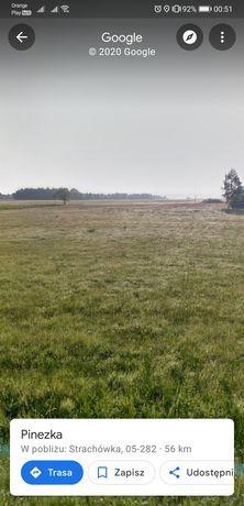 Dzierżawa działki 2ha pod farmę fotowoltaiczną