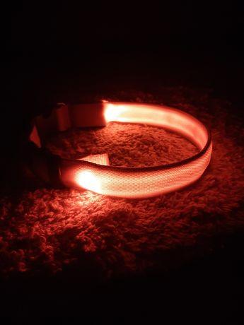 Светящийся / светодиодный ошейник
