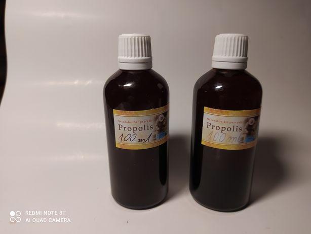 Propolis - nalewka propolisowa