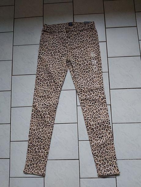 Nowe spodnie w panterkę