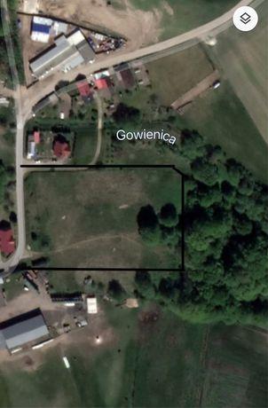 Kościuszki gm, Osina -Działka budowlana.14500 m²,media