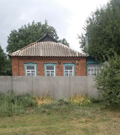 Продам дом в селе Козиевка