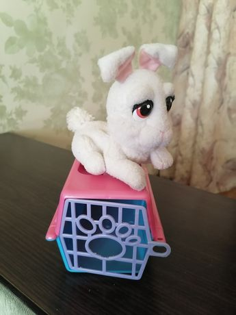 Кролик в переноски