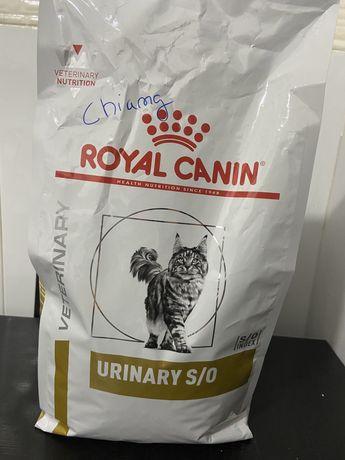 Ração Gato Royal Canin