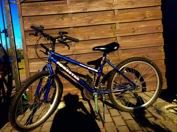 Rower młodzieżowy Forester
