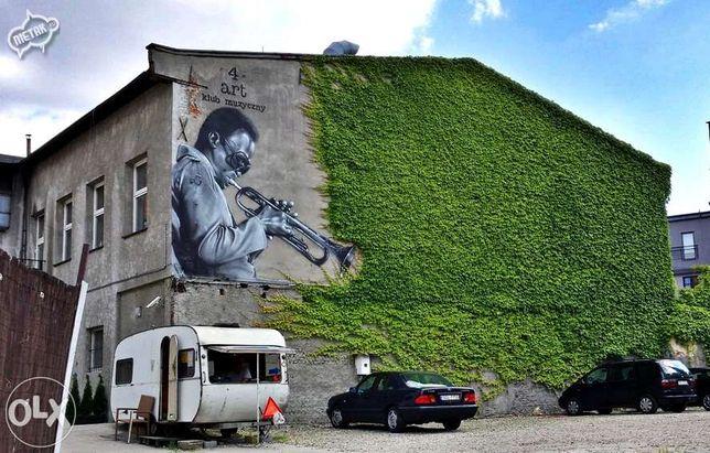 Graffiti, Malowanie Artystyczne, Mural,Murale,Reklama,Grafiti,pokój