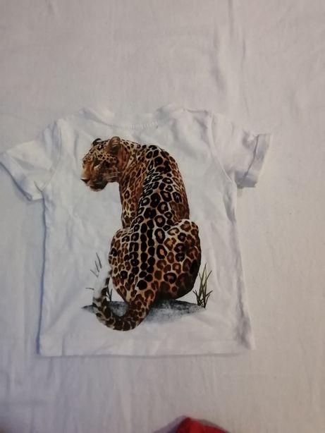 Koszulki chłopięce 3 szt. H&M i Zara