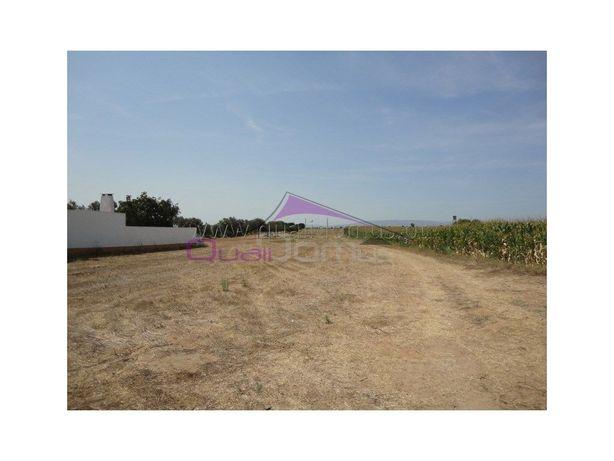 Terreno rústico com 6000 m2 perto da Golegã.