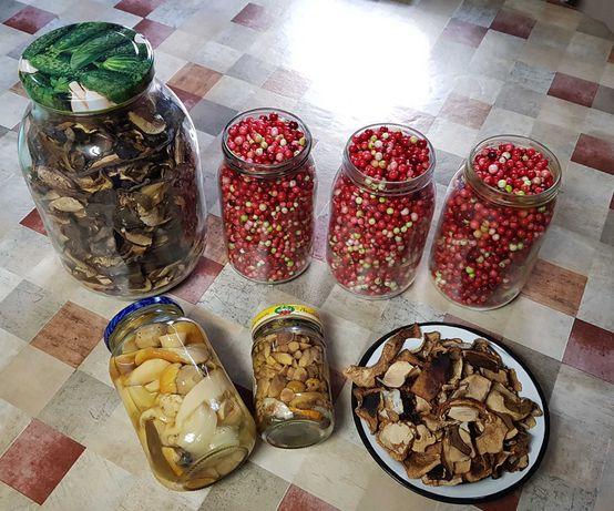 Borówka leśna, jagoda dżem, grzyby suszone i marynowane