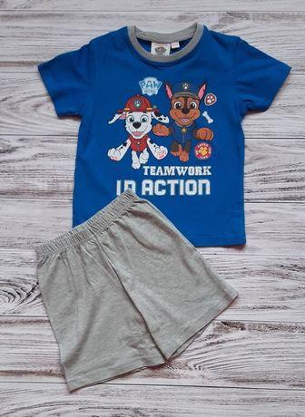 Комплект для мальчика 4-5 лет, шорты и футболка