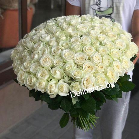 Розы !!! 25 шт , 55 шт , 101 шт !!!
