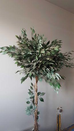 Kwiat benjamin fikus sztuczny drzewo 180 cm wysoki dekoracyjny