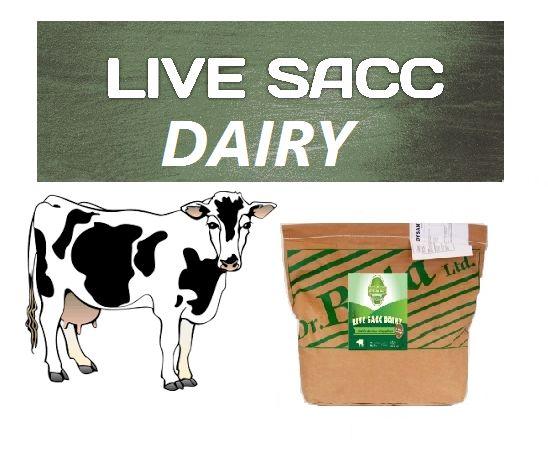 Żywe drożdże (mikro kapsułkowane) LIVE SACC DAIRY na kwasicę u krów
