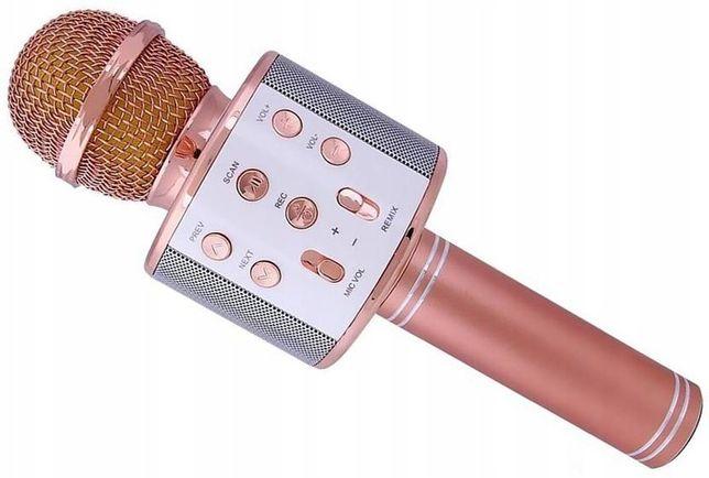 Mikrofon bezprzewodowy KARAOKE BLUETOOTH głośnik zabawka