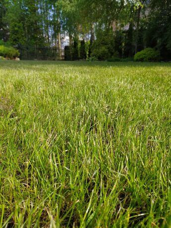 Koszenie trawników, ogrodnik
