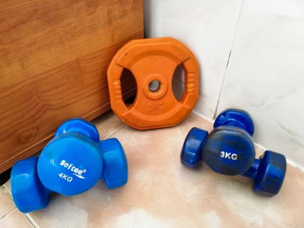 Pesos de treino e halter 5kg, 4kg e 3kg