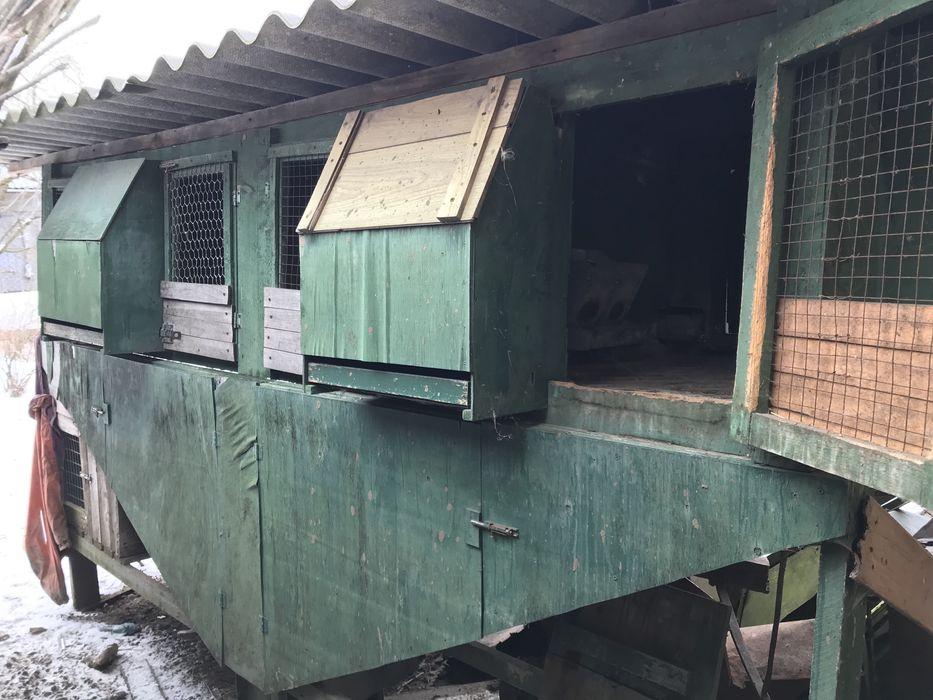 Продам клітку для кролів. Дрогобыч - изображение 1