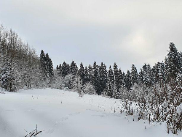 Białka Tatrzańska, piękna działka otoczona lasem, z prawem zabudowy