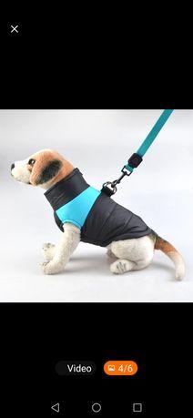 Продам одежду для собак+ подарок