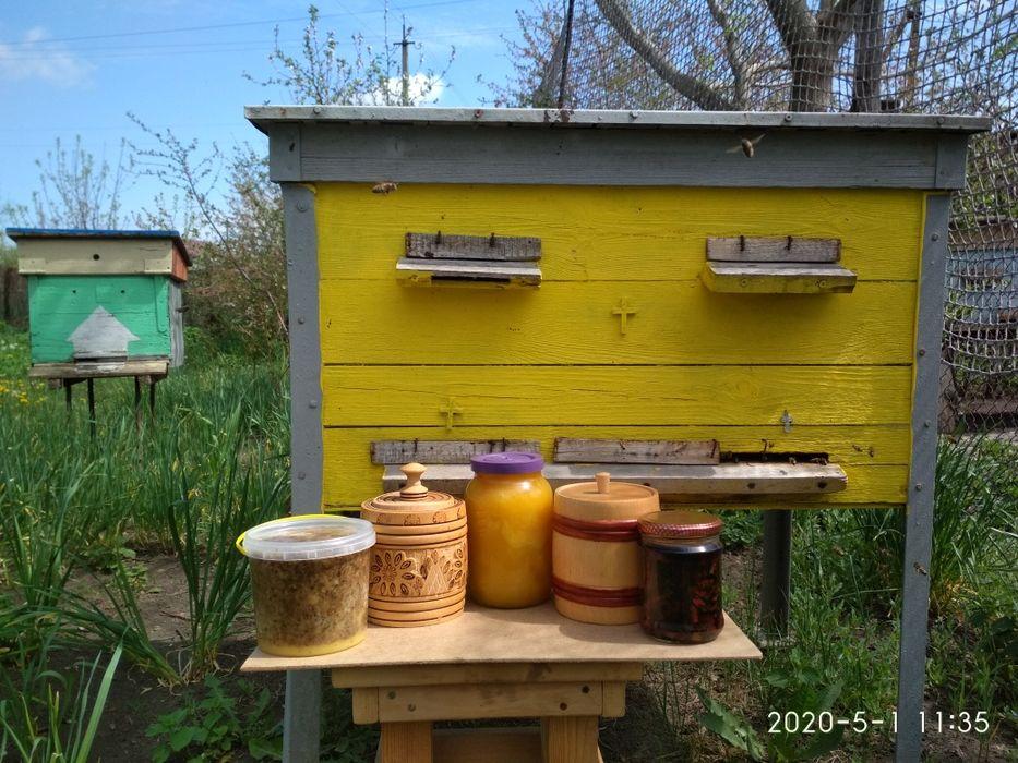 Мёд,забрус, прополис,мерва Песчаный Брод - изображение 1