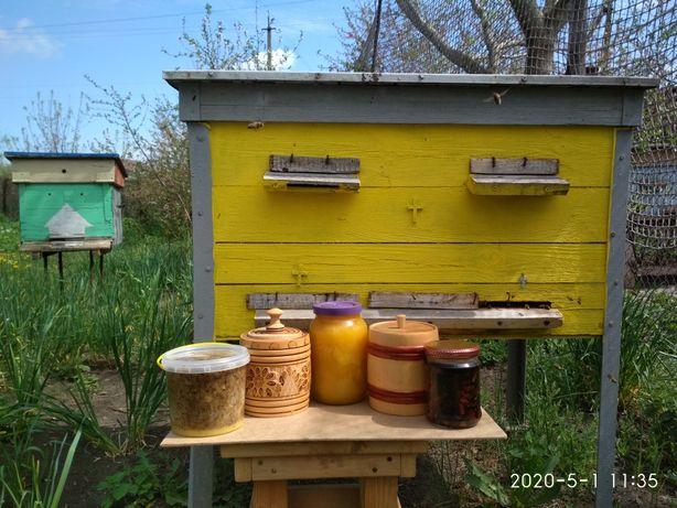 Мёд,забрус, прополис,мерва