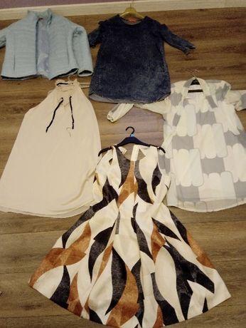 Witam mam do sprzedania 4 sukienki i kurtke rozmiar 40-42