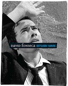 CD + DVD David Fonseca - Between Waves